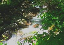 circuit de randonnée du moulin montsapey en savoie